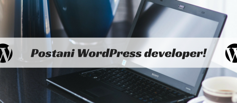 24h-do-wordpress-developera